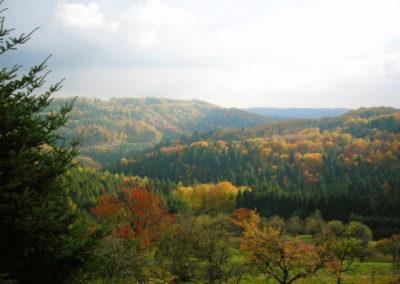 Gasthof-Siller-Umgebung-Schwaebisch-Fraenkischer-Wald