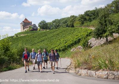 Region_HeilbronerLand_Wandern