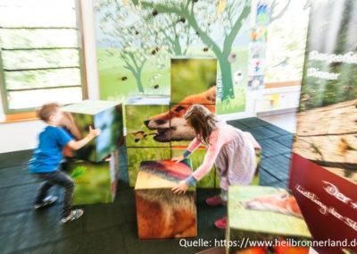 Region_HeilbronnerLand_Rathay_150730_0605